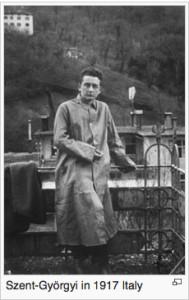 Albert-Szent-Györgyi--Wikipedia