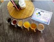 Testeando Bebidas y endulzantes - Dieta alcalina Pdf