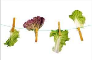 Dietas Extremas: Extreme diets