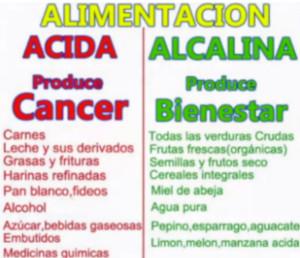ALIMENTACION ACIDA ALCALINA